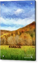 Acrylic Print featuring the photograph Hay Bales by Lois Bryan