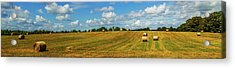 Acrylic Print featuring the photograph Hay Bales Panoramic by Barry Jones