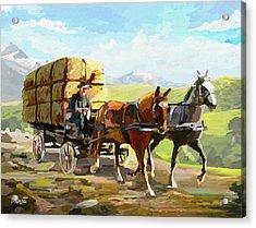 Hay Delivery Man Acrylic Print by Anthony Mwangi
