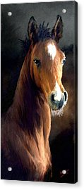 Acrylic Print featuring the painting Hay Dude by James Shepherd