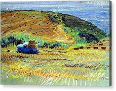 Hay Harvest On The Coast Acrylic Print