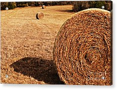 Hay In The Field Acrylic Print by Tamyra Ayles