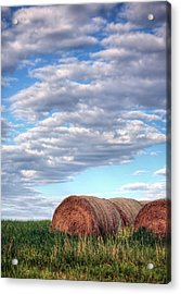 Hay It's Art Acrylic Print by JC Findley