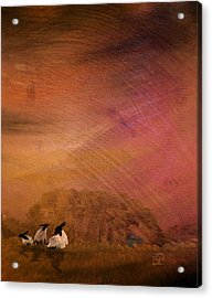 Acrylic Print featuring the digital art Hay by Jean Moore