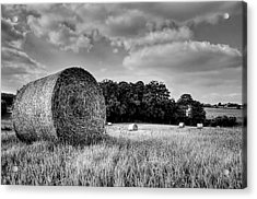 Hay Race Track Acrylic Print by Jeremy Lavender Photography