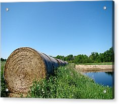 Hay Roll Acrylic Print by Todd Zabel