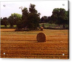 Acrylic Print featuring the photograph Hay Rolls 2 Db  2 by Lyle Crump