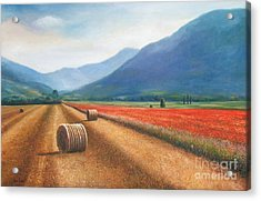 Haybales In Italy Acrylic Print by Ann  Cockerill