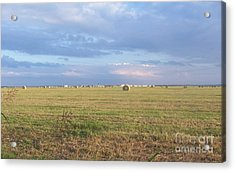 Haybales With Violet Sky Acrylic Print by Susan Williams