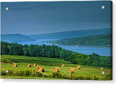 Hayfield And Lake I  Acrylic Print by Steven Ainsworth