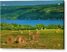 Hayfield And Lake Iv Acrylic Print by Steven Ainsworth