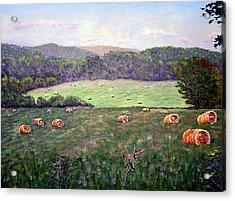 Hayfield  Acrylic Print by Stan Hamilton