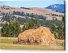 Acrylic Print featuring the photograph Haystack Created With A Beaverslide by Sue Smith