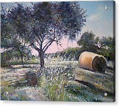 Haystack In Orchid Riano Italy 2009 Acrylic Print by Enver Larney