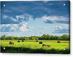 Haystacks In A Meadow Acrylic Print by Evgeny Buzov