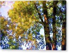 Hazy Green Acrylic Print by Carolyn Stagger Cokley