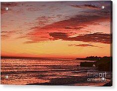 hd 330 Dog Beach 1 HDR Acrylic Print by Chris Berry