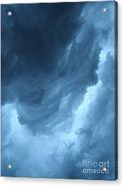Acrylic Print featuring the photograph Head For Cover by Angie Rea