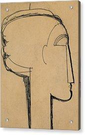 Head In Profile Acrylic Print