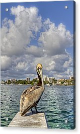 Head In The Clouds Acrylic Print by Debra and Dave Vanderlaan