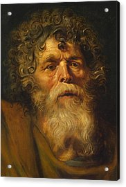 Head Of An Old Man Acrylic Print by Peter Paul Rubens