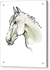 Head Sketch  Acrylic Print by Paul Miller