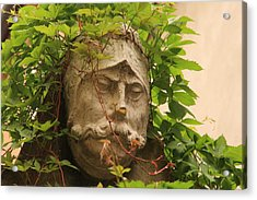 Head With Vines Acrylic Print by Michael Henderson