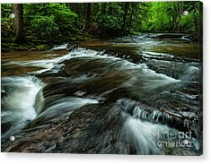Headwaters Of Williams River  Acrylic Print