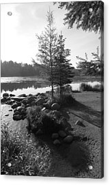 Headwaters Pine Acrylic Print by Christopher J Franklin