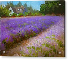 Impressionistic Lavender Field Landscape Plein Air Painting Acrylic Print