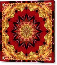 Healing Mandala 28 Acrylic Print