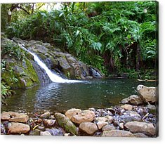 Healing Pool - Maui Hawaii Acrylic Print