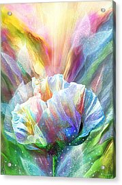 Acrylic Print featuring the mixed media Healing Poppy With Butterflies by Carol Cavalaris