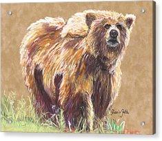 Healthy Brown Bear Acrylic Print by Gloria Smith