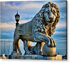 Acrylic Print featuring the photograph Hear Me Roar by Joetta West