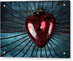 Heart In Cage Acrylic Print by Nailia Schwarz