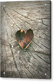 Heart In The Woods Acrylic Print
