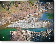 Acrylic Print featuring the photograph Heart Of Gold by Sherri Meyer