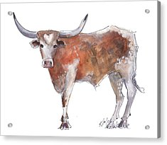 Heart Of Texas Longhorn Acrylic Print