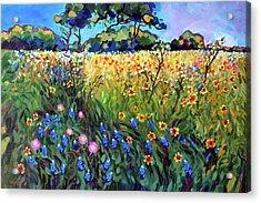Heart Of Texas Spring Pasture Acrylic Print