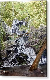 Acrylic Print featuring the painting Heart Of The Forest by Joel Deutsch