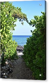 Acrylic Print featuring the photograph Heart Of The Path by Pamela Walton
