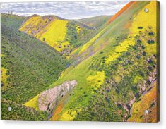 Acrylic Print featuring the photograph Heart Of The Temblor Range by Marc Crumpler