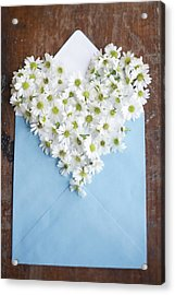 Heart Shaped Daisies In Blue Envelope Acrylic Print