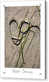 Heart Strings Acrylic Print by Peter Tellone