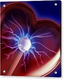 Heartbeat Acrylic Print by Sandy Ostroff