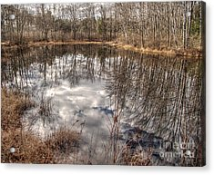 Acrylic Print featuring the photograph Heaven Below by Betsy Zimmerli