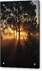Acrylic Print featuring the photograph Heavenly by John Knapko
