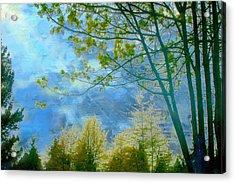 Heavenly Light II Acrylic Print