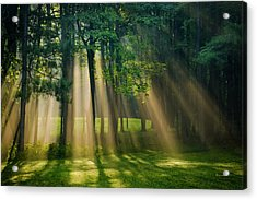 Acrylic Print featuring the photograph Heavenly Light Sunrise by Christina Rollo